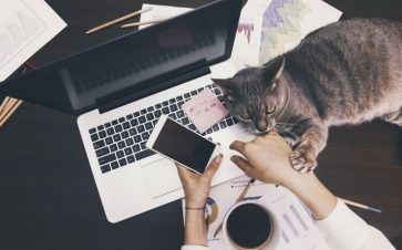 Woman with cat, coffee, and paperwork using cell phone and laptop computer FI