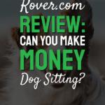 Rover.com pinterest