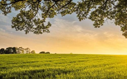image farm land