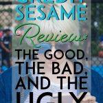 Credit Sesame Review pinterest pin