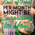 The average cost of food per month might be surprising to you pinterest pin