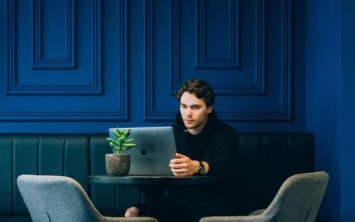 Man using computer to look at credible with succulent plant nearby