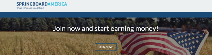 Screenshot of the Springboard America website