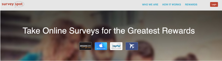 Survey Spot page screenshot
