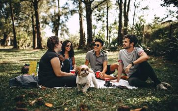 Group of friends on a picnic in a park with the dog having fun